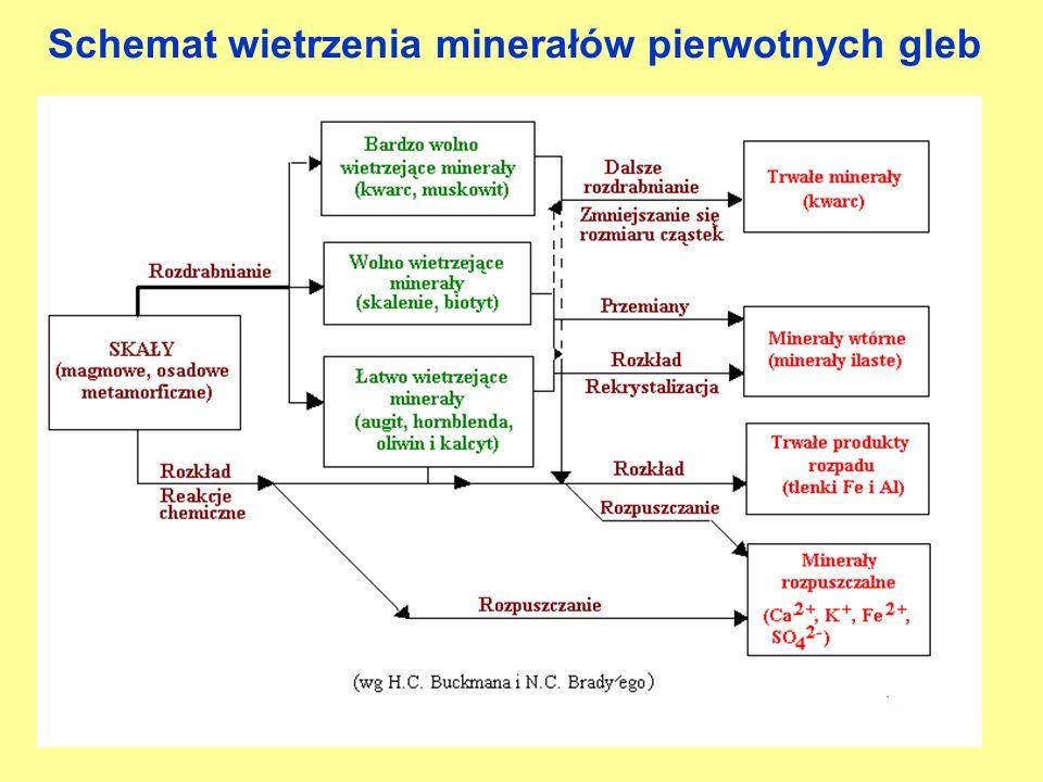 Schemat wietrzenia minerałów pierwotnych gleb