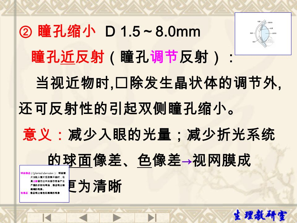 ② 瞳孔缩小 D 1.5~8.0mm 瞳孔近反射(瞳孔调节反射): 当视近物时,除发生晶状体的调节外,还可反射性的引起双侧瞳孔缩小。 意义:减少入眼的光量;减少折光系统. 的球面像差、色像差→视网膜成.