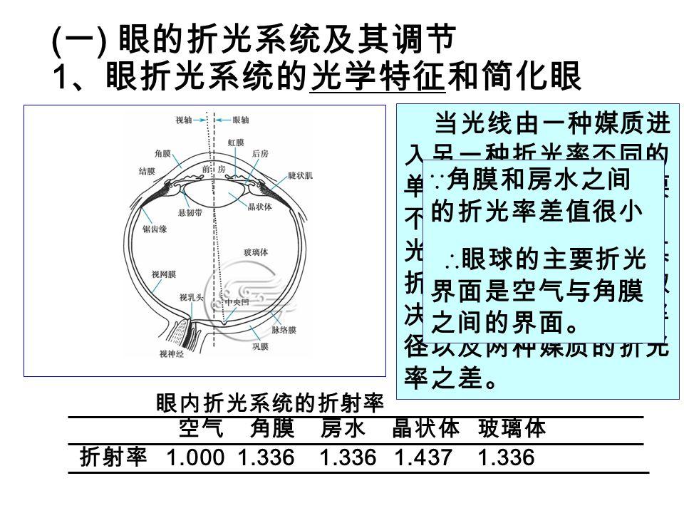 (一) 眼的折光系统及其调节 1、眼折光系统的光学特征和简化眼