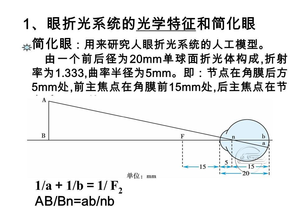 1、眼折光系统的光学特征和简化眼 简化眼:用来研究人眼折光系统的人工模型。 1/a+1/b=1/ F2 AB/Bn=ab/nb