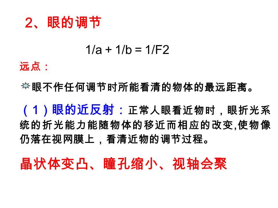2、眼的调节 晶状体变凸、瞳孔缩小、视轴会聚 1/a+1/b=1/F2