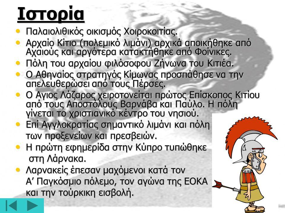 Ιστορία Παλαιολιθικός οικισμός Χοιροκοιτίας.