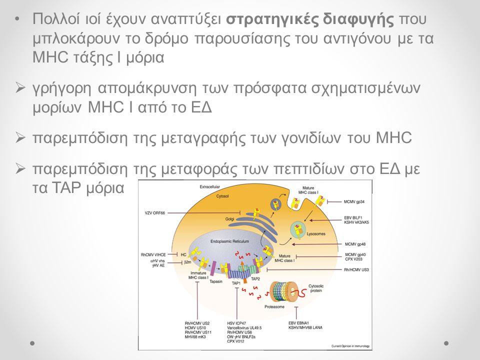 Πολλοί ιοί έχουν αναπτύξει στρατηγικές διαφυγής που μπλοκάρουν το δρόμο παρουσίασης του αντιγόνου με τα MHC τάξης Ι μόρια