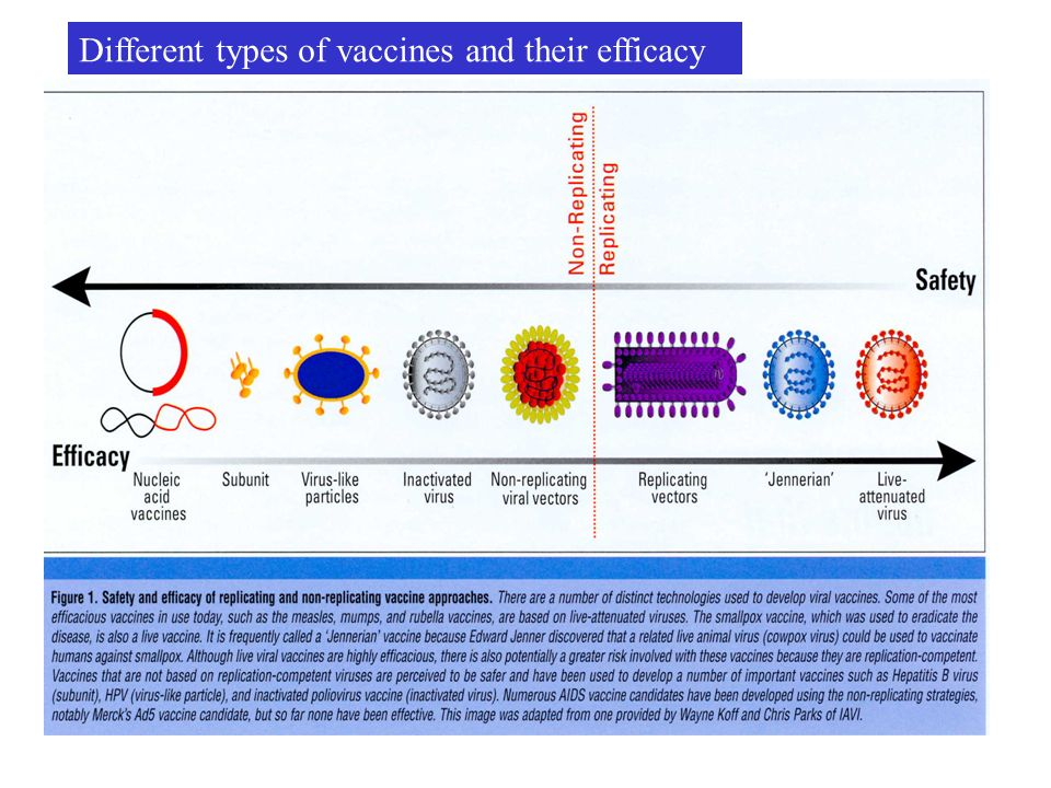 Different types of vaccines and their efficacy