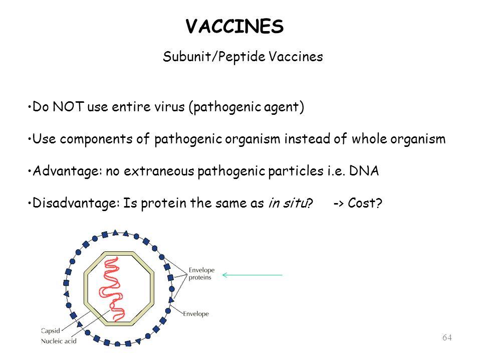 Subunit/Peptide Vaccines