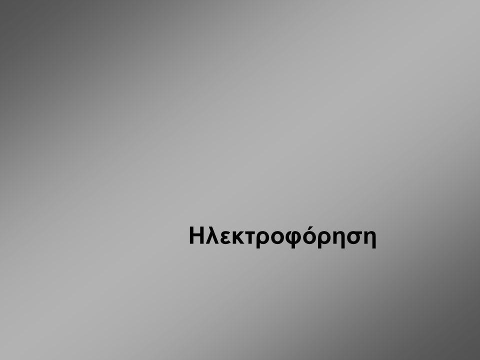 Ηλεκτροφόρηση