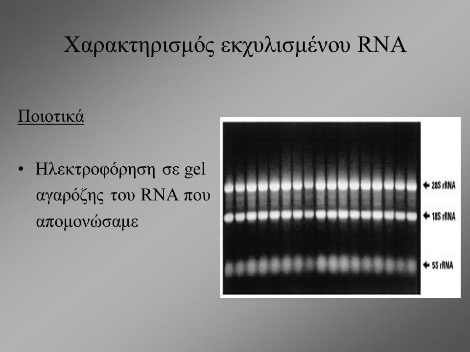 Χαρακτηρισμός εκχυλισμένου RNA