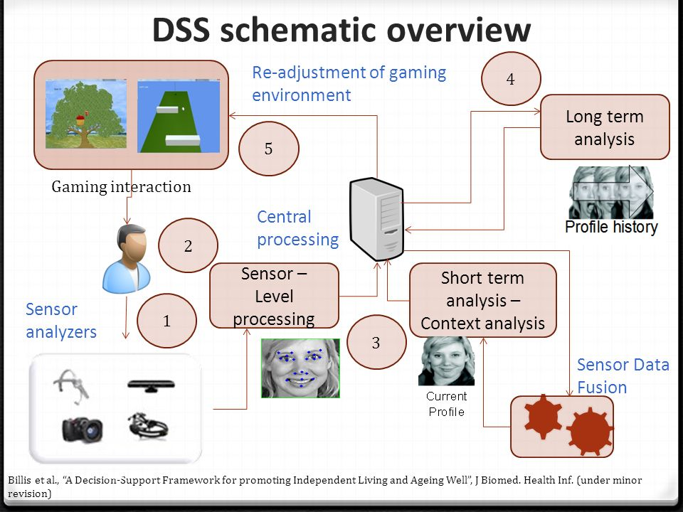 DSS schematic overview