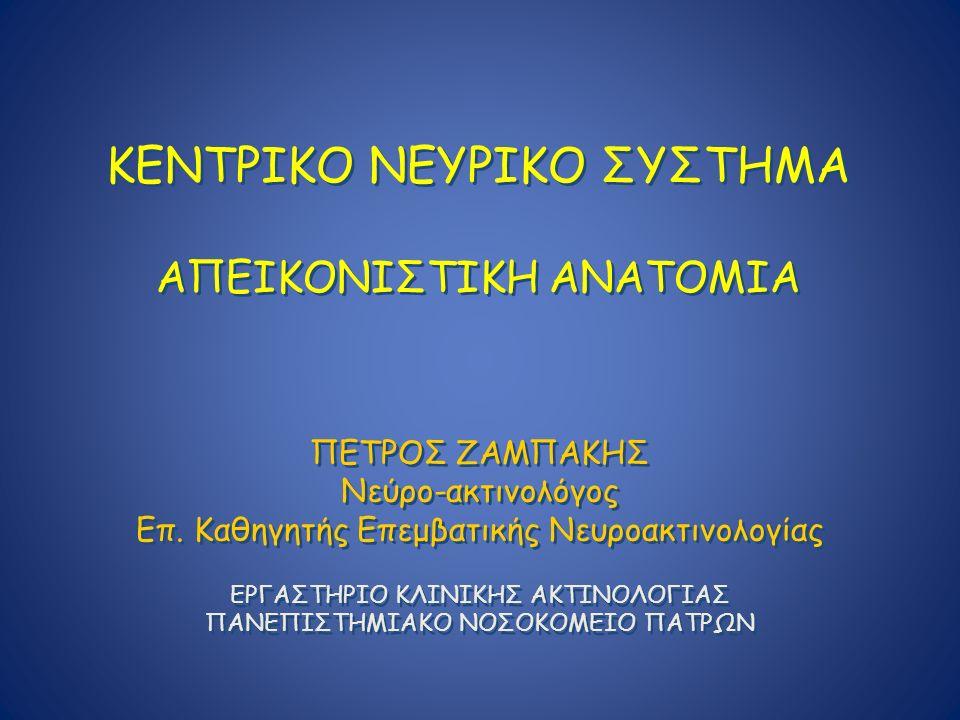 ΚΕΝΤΡΙΚΟ ΝΕΥΡΙΚΟ ΣΥΣΤΗΜΑ ΑΠΕΙΚΟΝΙΣΤΙΚΗ ΑΝΑΤΟΜΙΑ