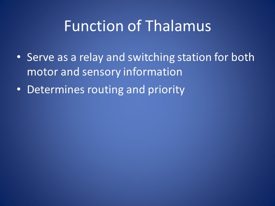 Function of Thalamus Serve as a relay and switching station for both motor and sensory information.