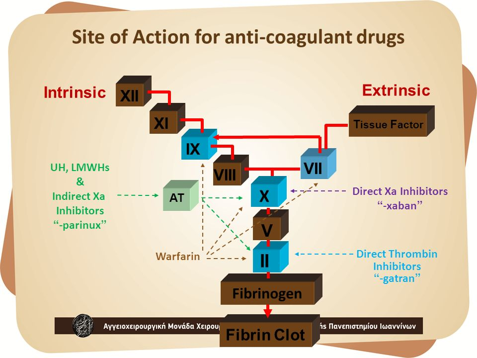 Site of Action for anti-coagulant drugs
