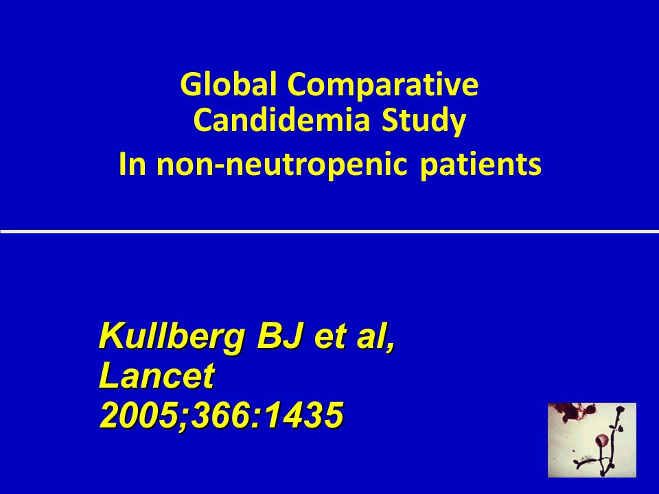Global Comparative Candidemia Study In non-neutropenic patients