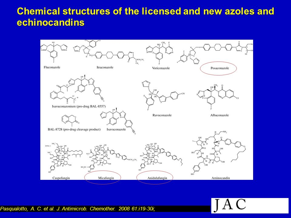 Chemical structures of the licensed and new azoles and echinocandins