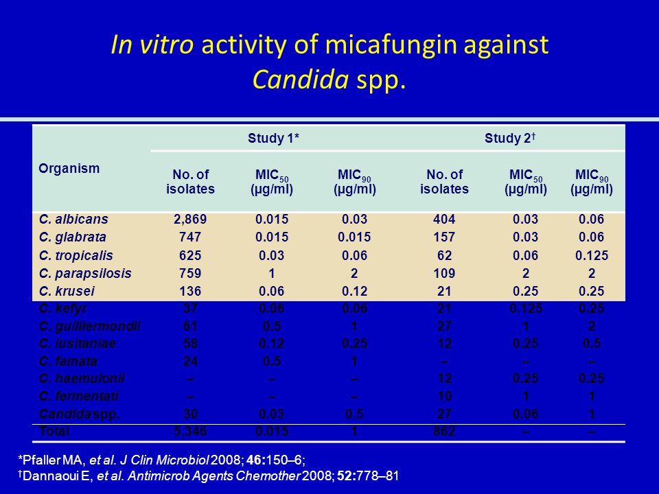 In vitro activity of micafungin against Candida spp.
