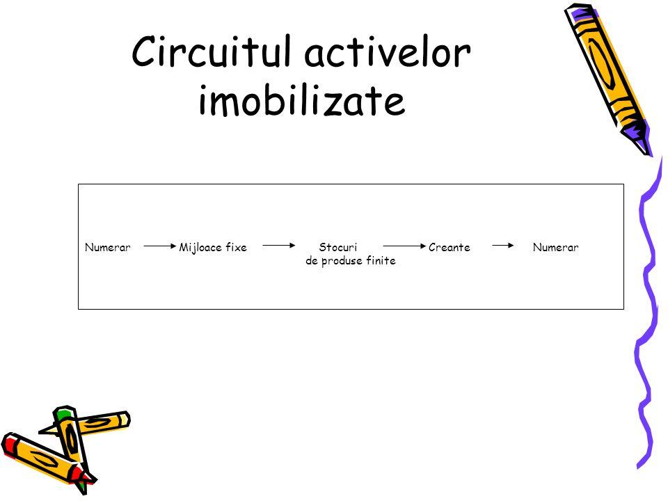 Circuitul activelor imobilizate