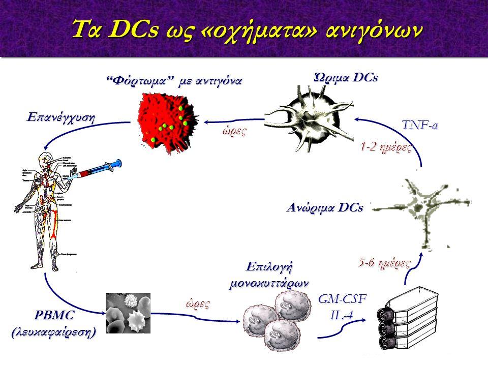 Τα DCs ως «οχήματα» ανιγόνων