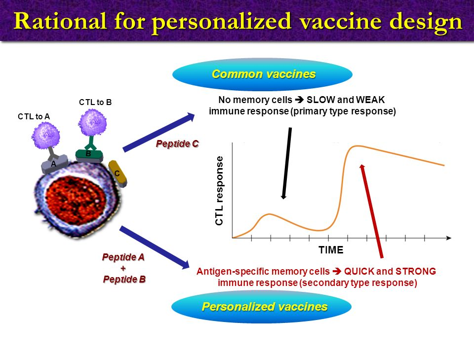Rational for personalized vaccine design