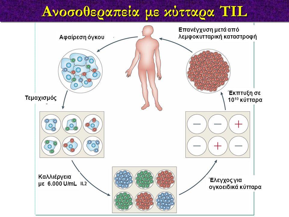 Ανοσοθεραπεία με κύτταρα TIL