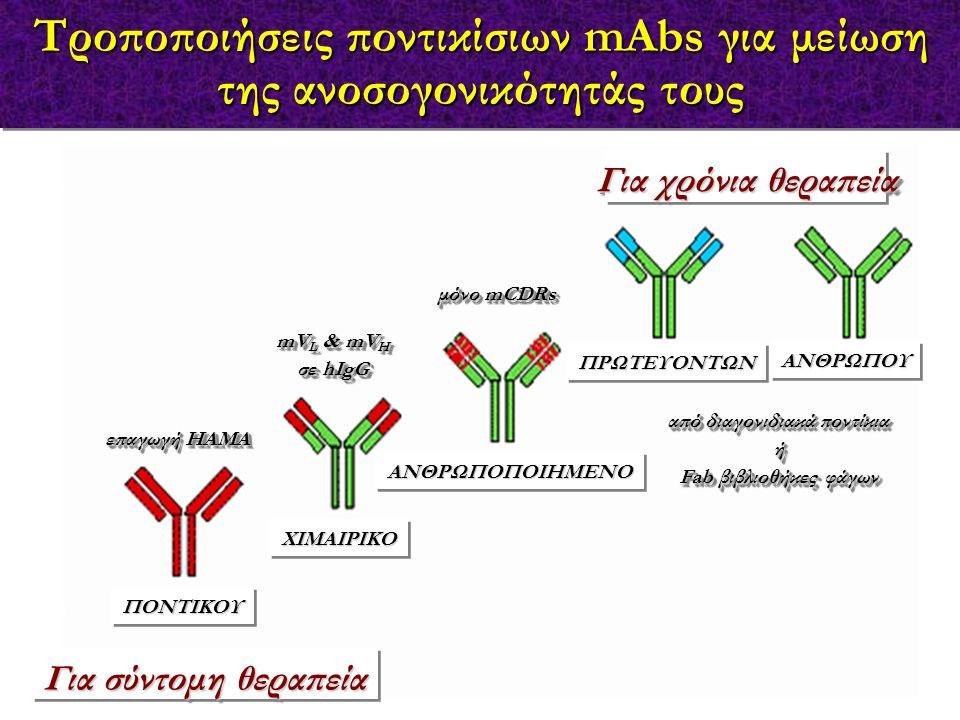 Τροποποιήσεις ποντικίσιων mAbs για μείωση της ανοσογονικότητάς τους