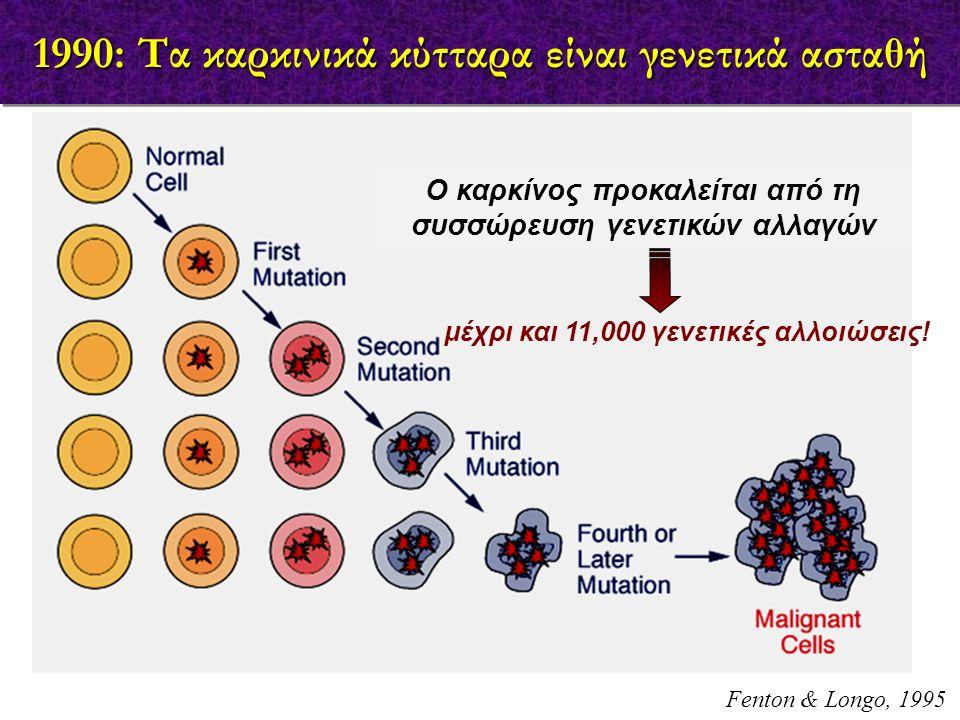 1990: Τα καρκινικά κύτταρα είναι γενετικά ασταθή