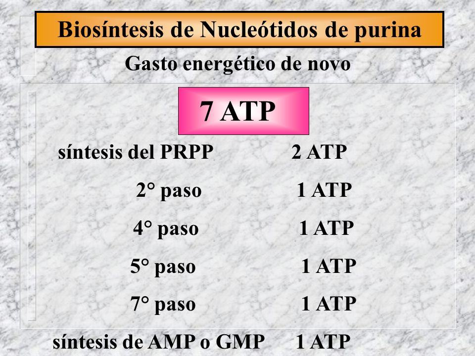 Biosíntesis de Nucleótidos de purina Gasto energético de novo