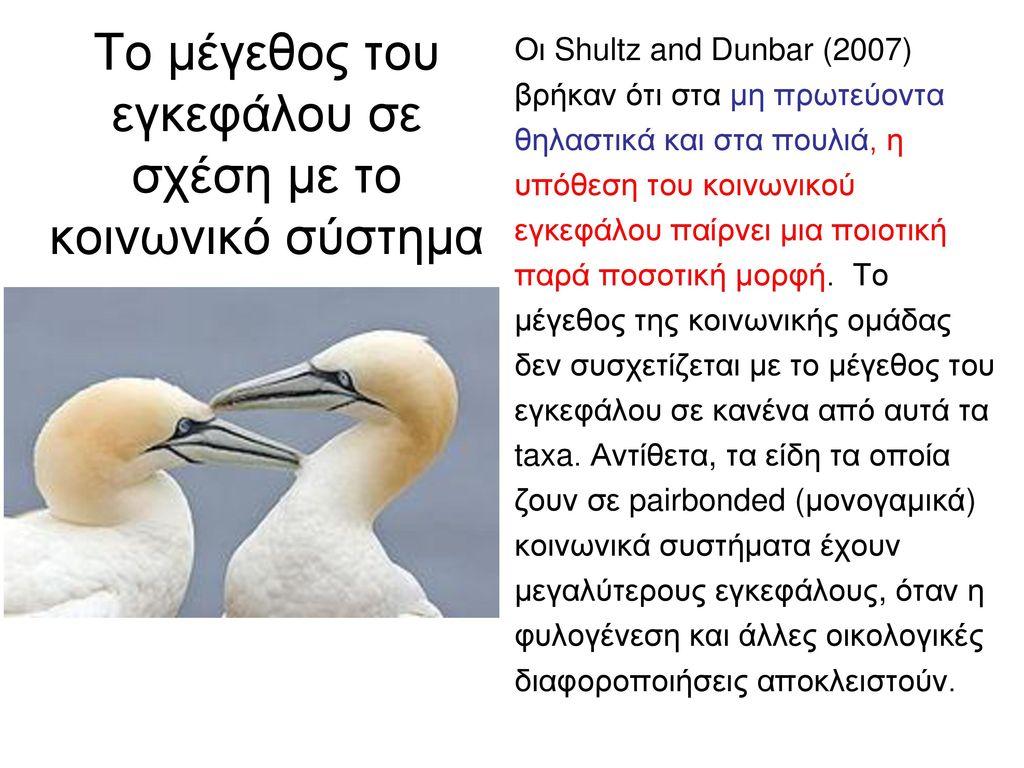 Μεγάλο λεία λαμβάνοντας μεγάλο πουλί