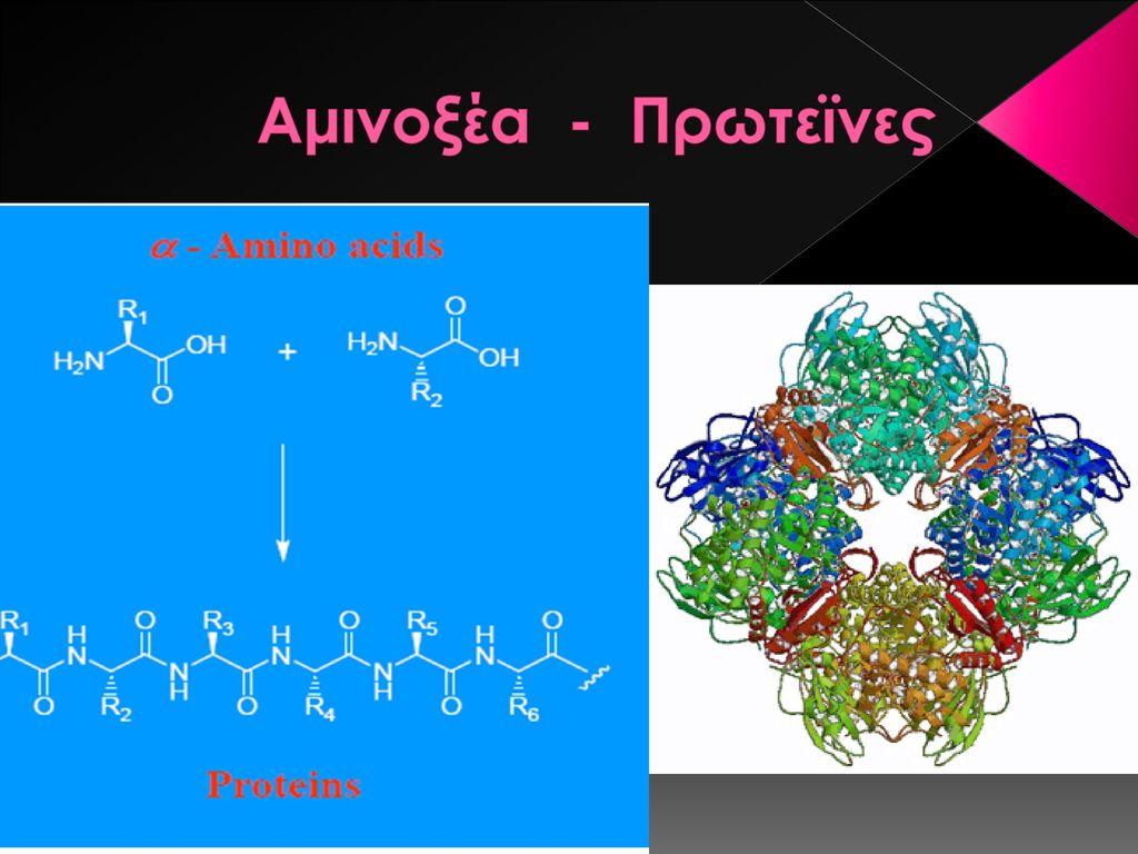 Που χρονολογούνται από το αμινοξύ