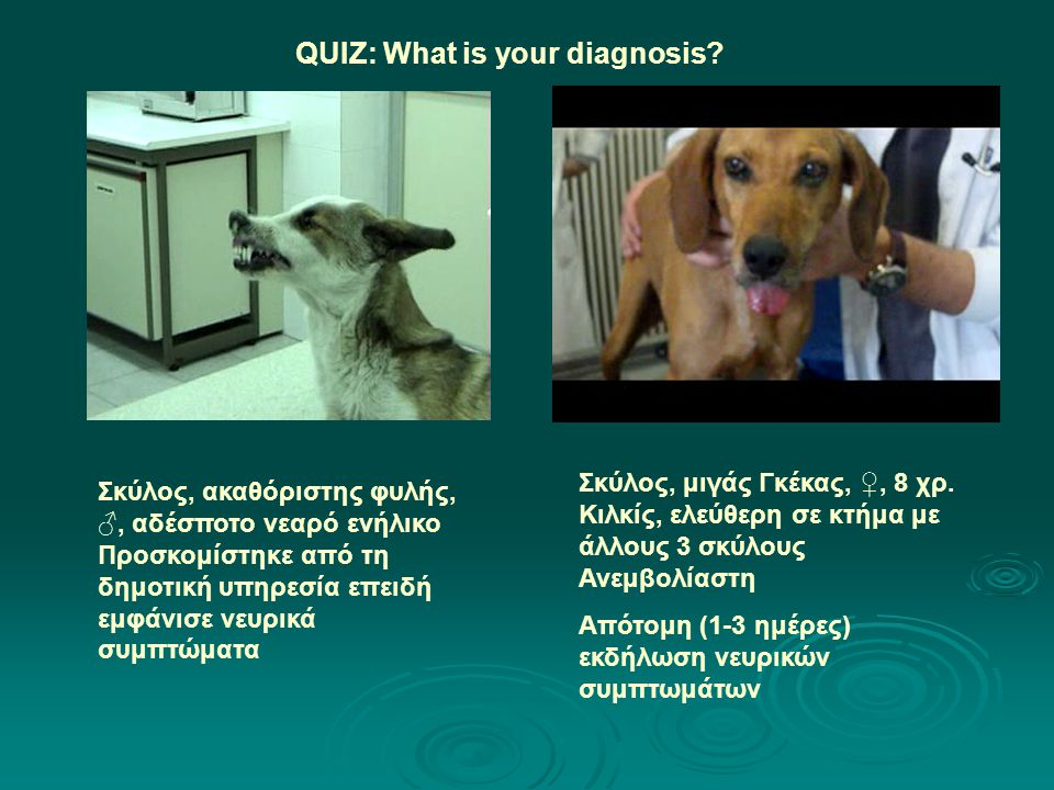 QUIZ: What is your diagnosis