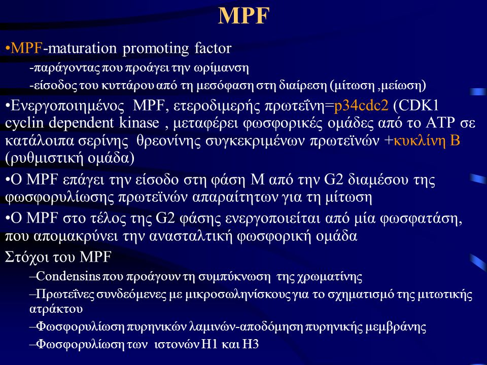 ΜPF MPF-maturation promoting factor