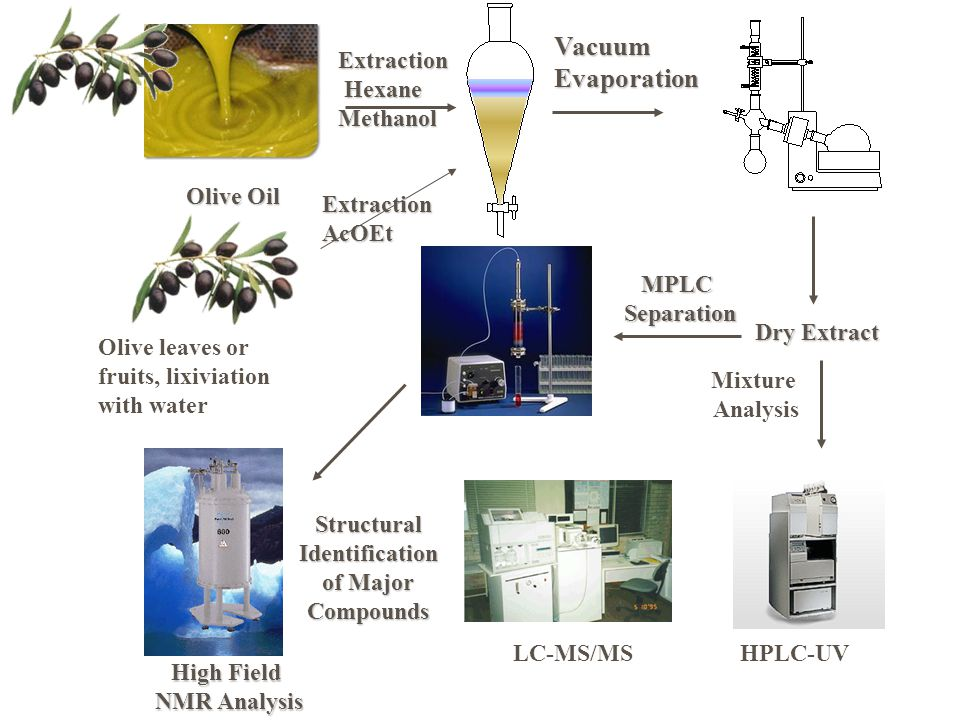 Vacuum Evaporation Extraction Hexane Methanol Olive Oil Extraction