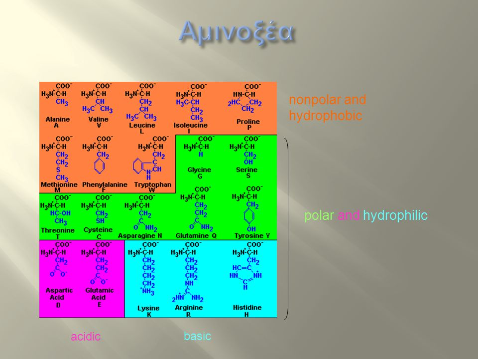 Αμινοξέα nonpolar and hydrophobic polar and hydrophilic acidic basic