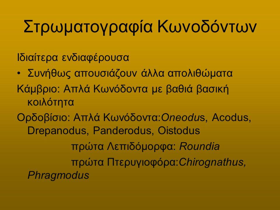 Στρωματογραφία απολιθωμάτων