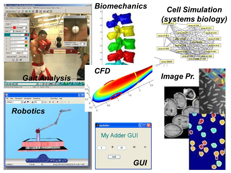Biomechanics Cell Simulation (systems biology) CFD Image Pr. Gait Analysis Robotics GUI