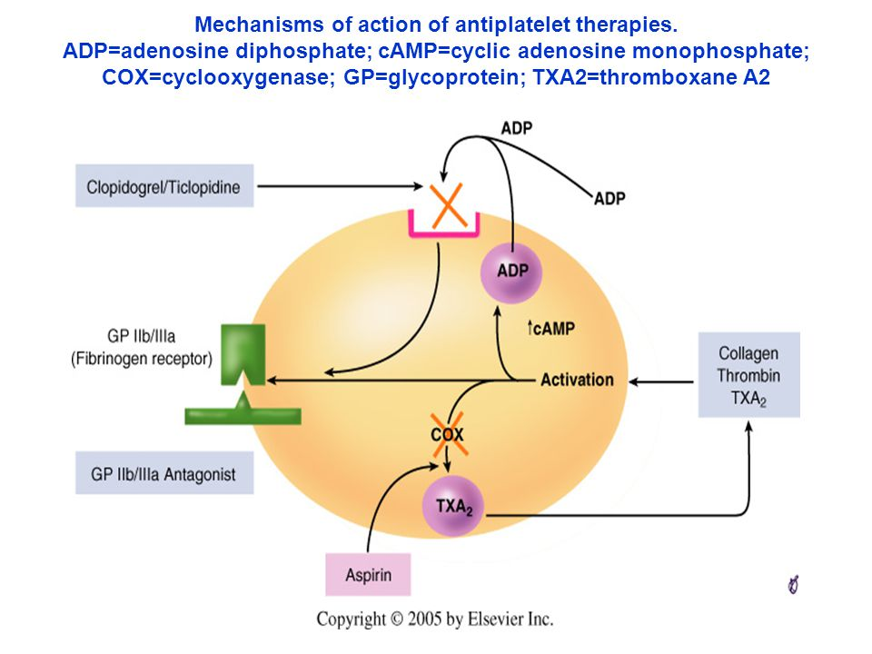 Mechanisms of action of antiplatelet therapies.
