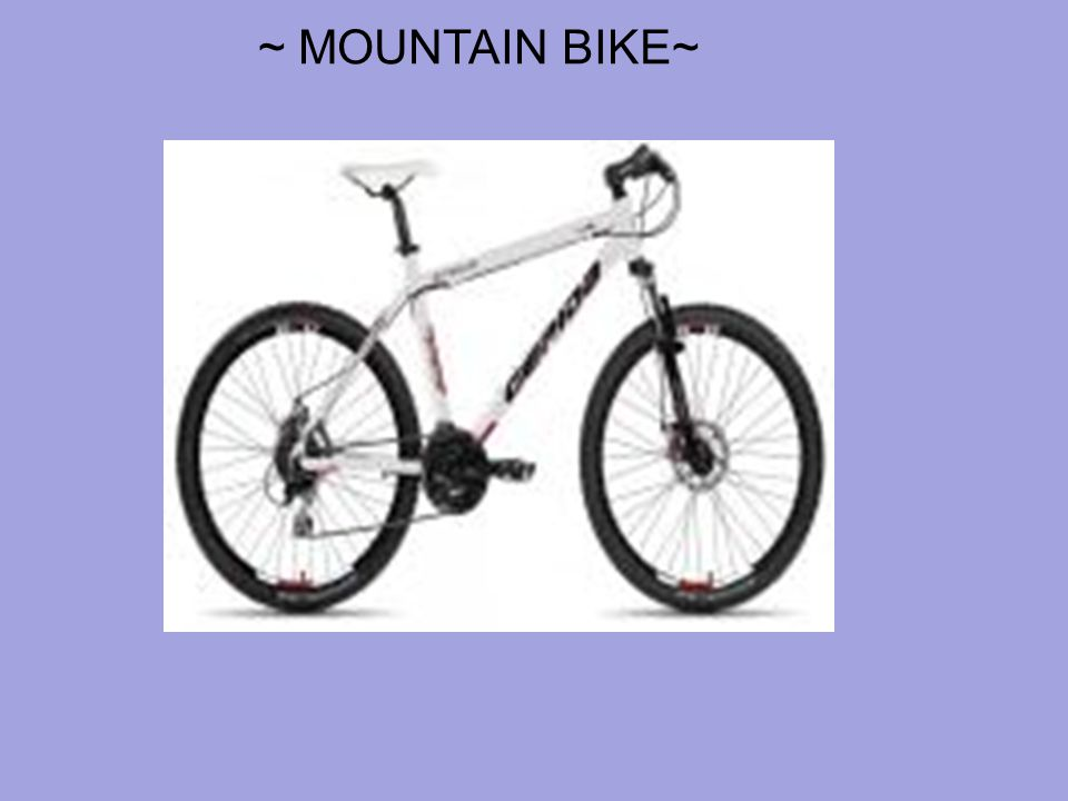 ~ MOUNTAIN BIKE~