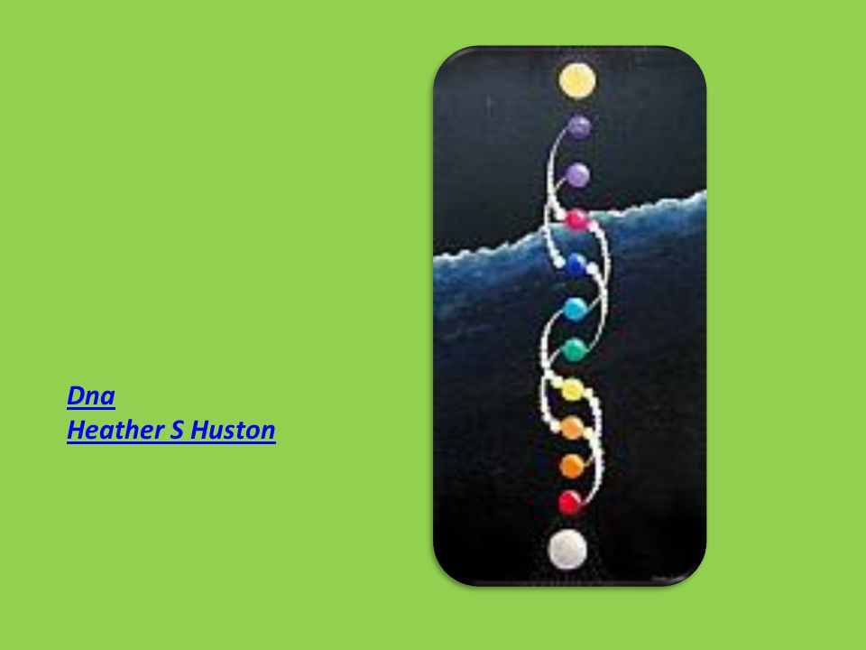 Dna Heather S Huston