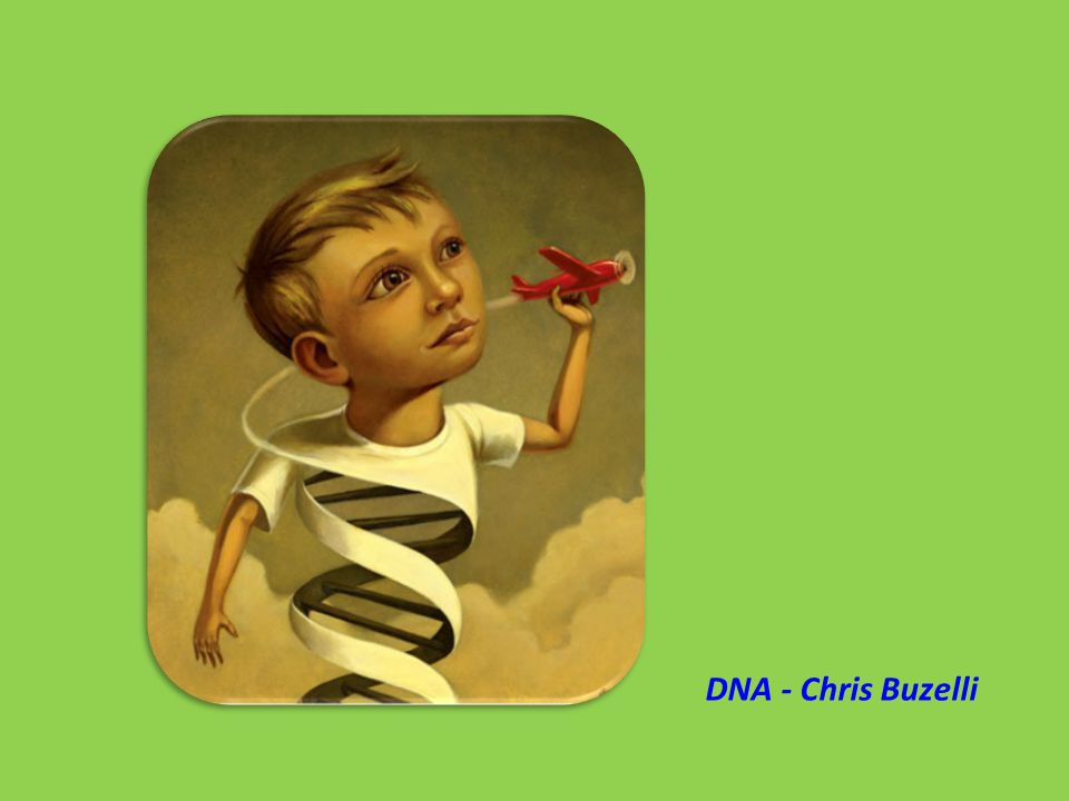 DNA - Chris Buzelli