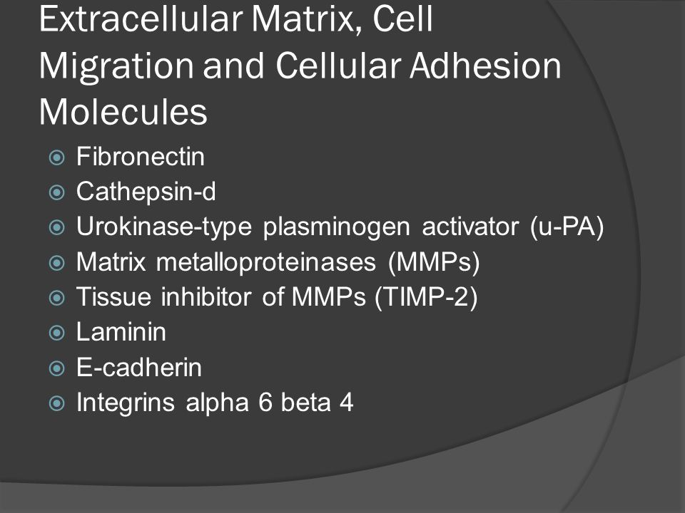 Extracellular Matrix, Cell Migration and Cellular Adhesion Molecules