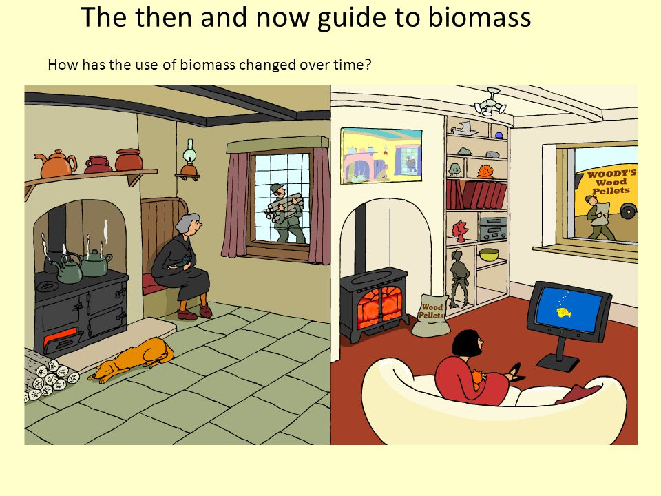The then and now guide to biomass