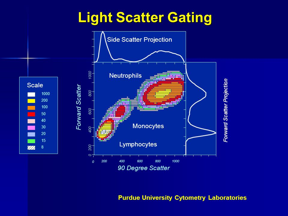 Light Scatter Gating Side Scatter Projection Neutrophils Scale