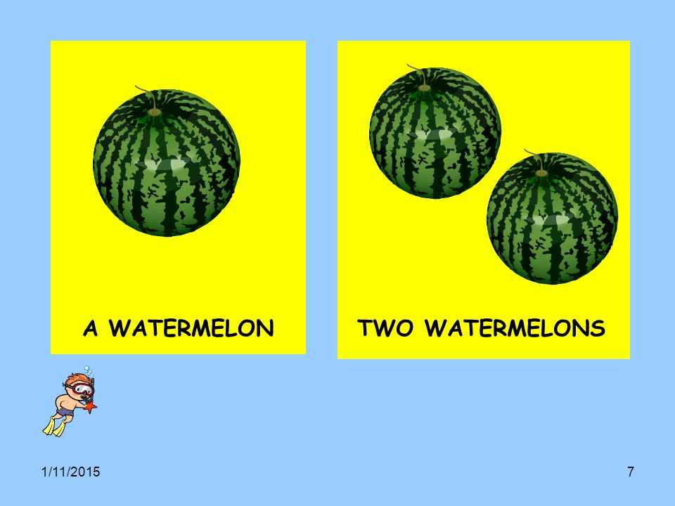 A WATERMELON TWO WATERMELONS