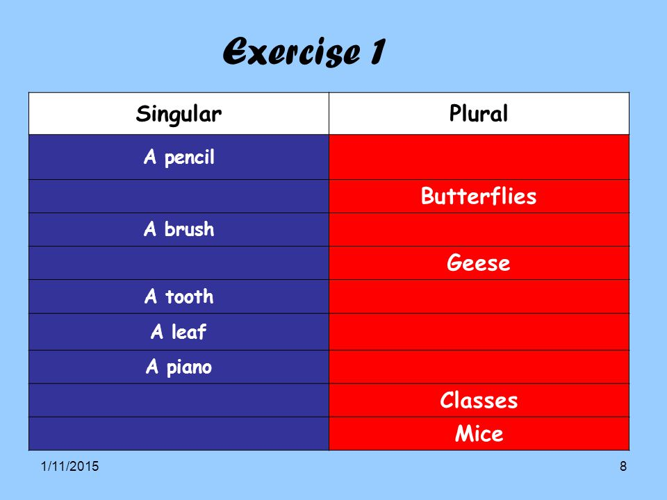 Exercise 1 Singular Plural Butterflies Geese Classes Mice A pencil