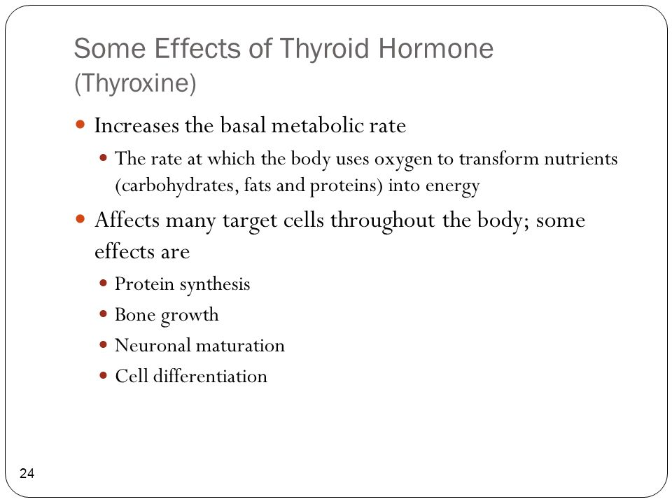 Some Effects of Thyroid Hormone (Thyroxine)