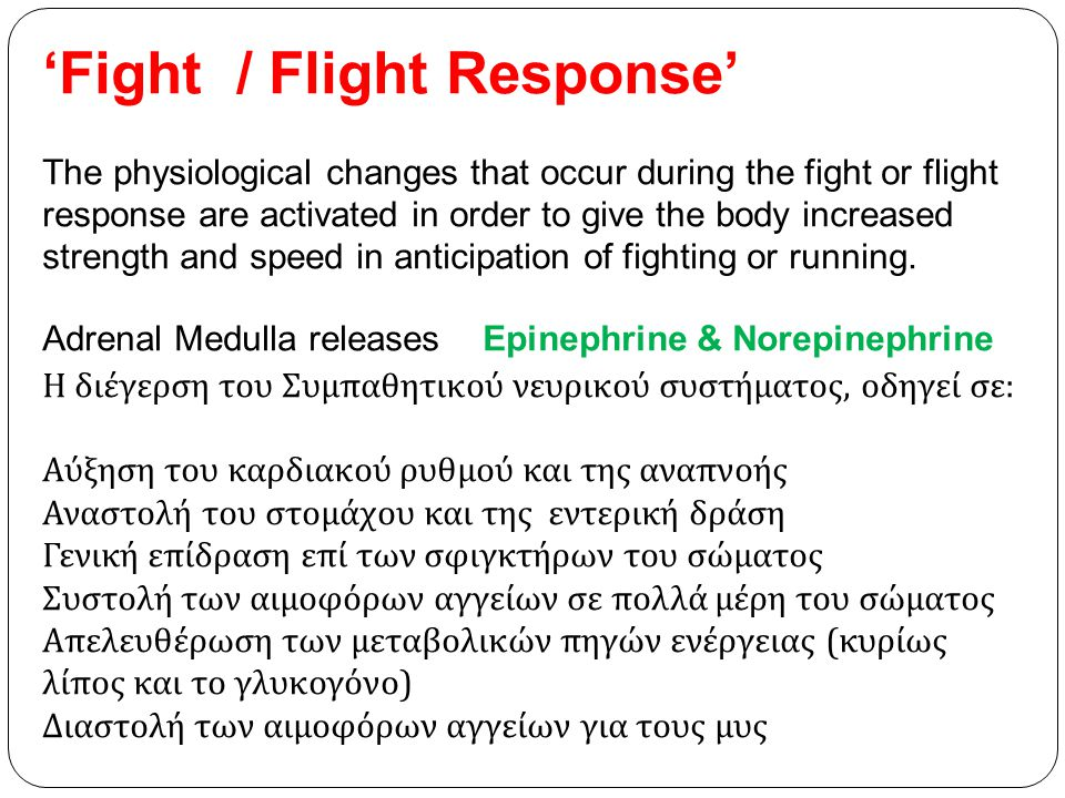 'Fight / Flight Response'