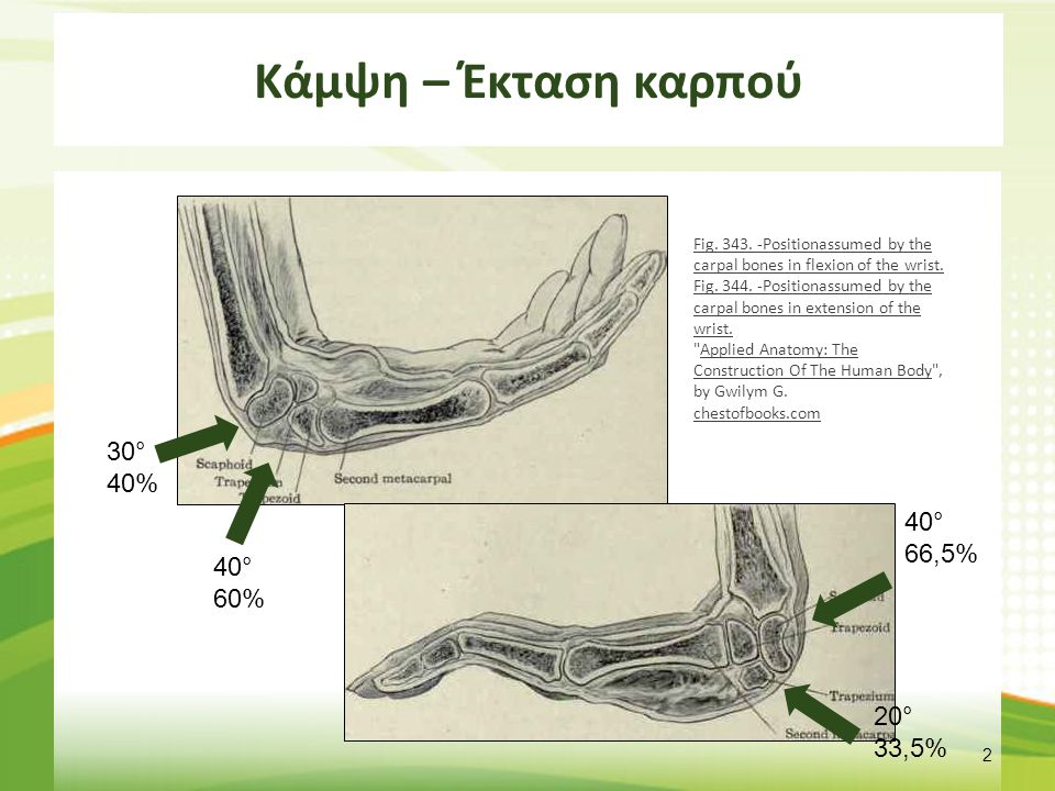 Άρθρωση Καρπού 1/2 Triangular bone (left hand) - animation01 , από Was a bee διαθέσιμο με άδεια Attribution-Share Alike 2.1 Japan.