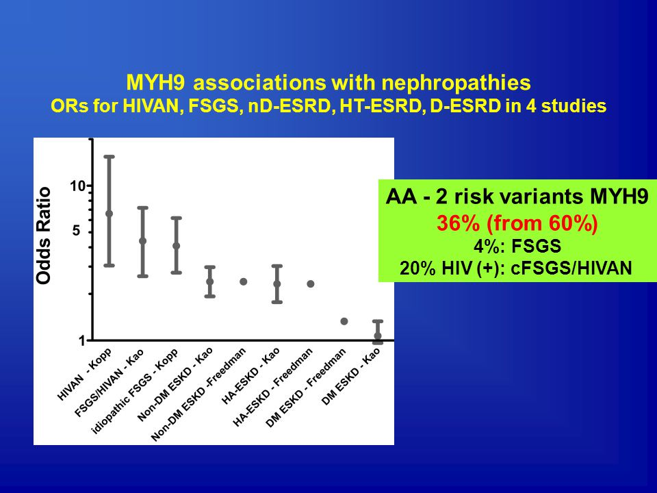 MYH9 associations with nephropathies