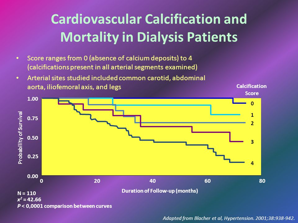 Cardiovascular Calcification and Mortality in Dialysis Patients