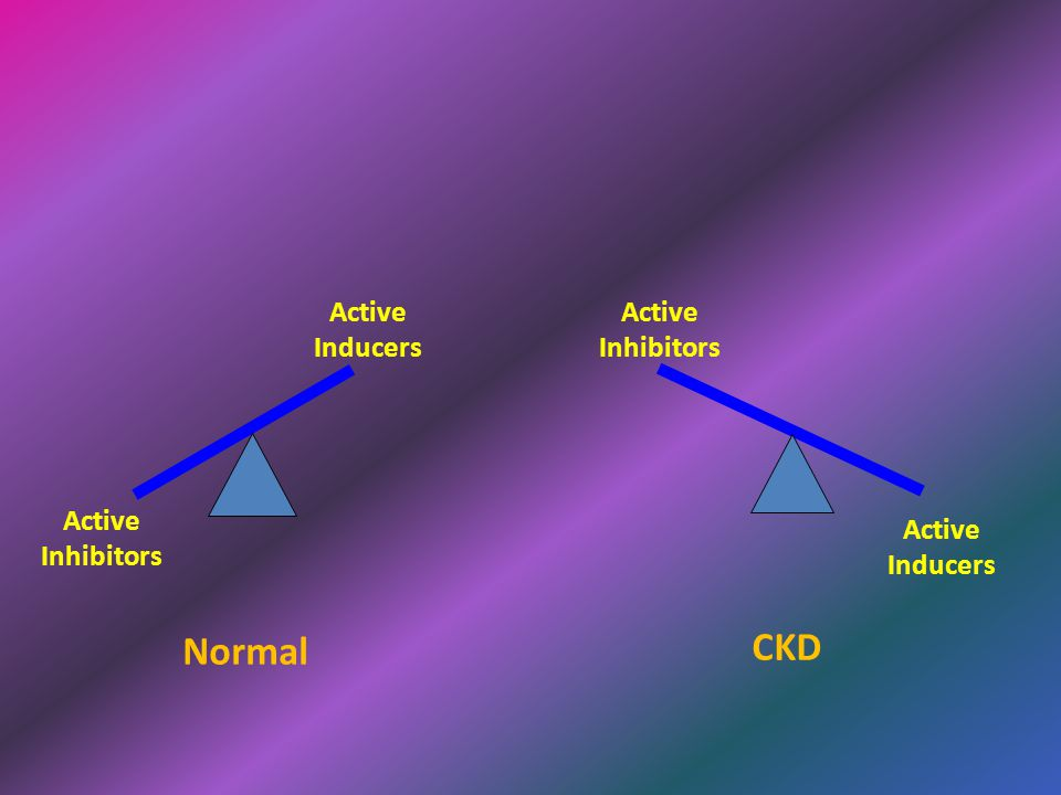 CKD Normal Active Inhibitors Active Inducers Active Inhibitors