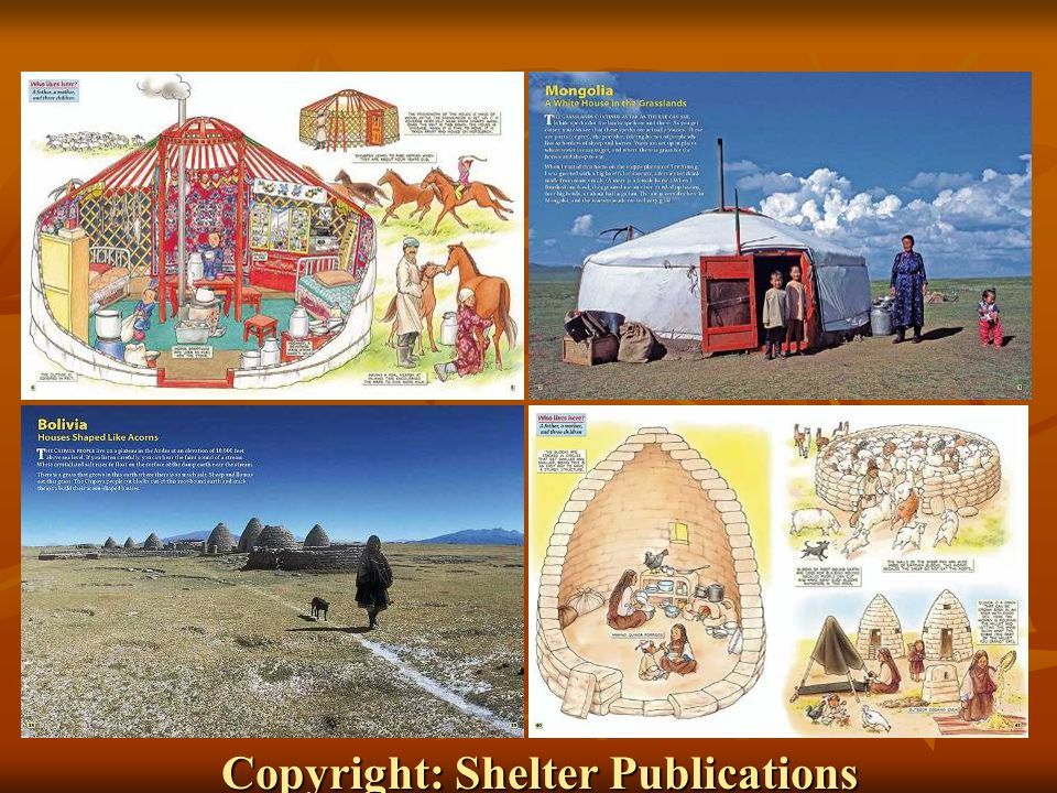 Copyright: Shelter Publications