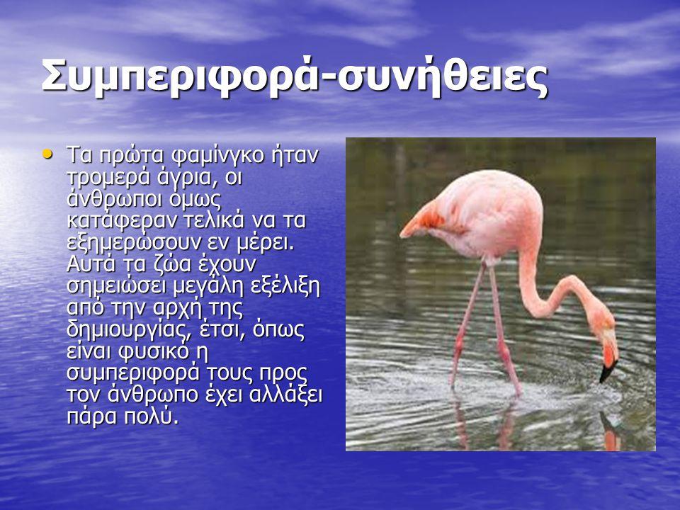 Πώς να ξέρετε αν ένας άνθρωπος έχει ένα μεγάλο πουλί